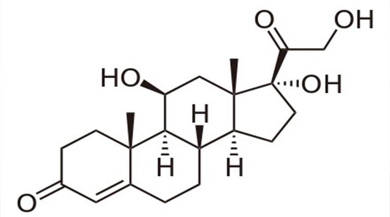 kortyzol hormon stresu